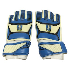 SWFC goalkeeper gloves